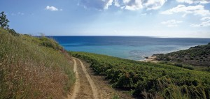territorio_ecotour-trekking-03-1346429595
