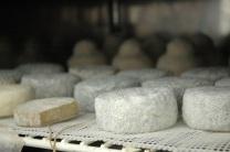 8-stagionatura-dei-formaggi