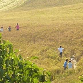Visita alla fattoria didattica Ruralia. Alia (Pa), domenica 8Ottobre